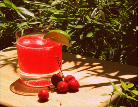 rose hip lemonade