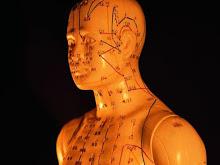Bloc divulgatiu sobre la Medicina Tradicional Xinesa i les Teràpies Naturals