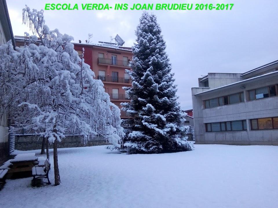 ESCOLA VERDA - INS JOAN BRUDIEU - LA SEU D'URGELL