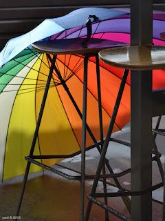 rainbow umbrella at circular quay