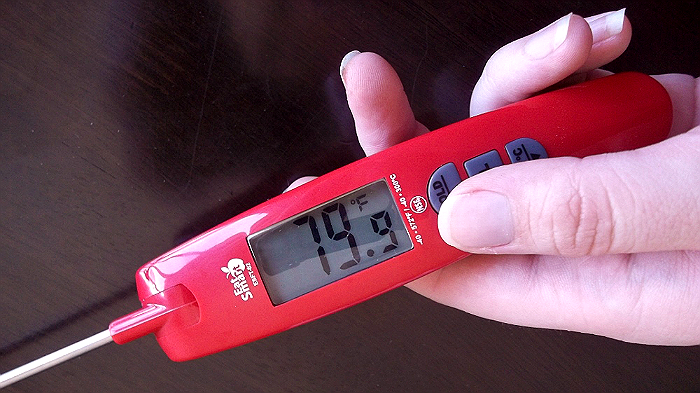 Use a Digital Thermometer Like EATSmart's Precision Elite Thermocouple Food Thermometer To Monitor Cooking Temperatures