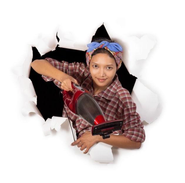Marzua c mo combatir las termitas - Acabar con las termitas ...