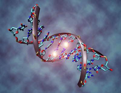 O que é genética?