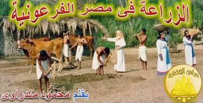 الزراعة فى مصر الفرعونية