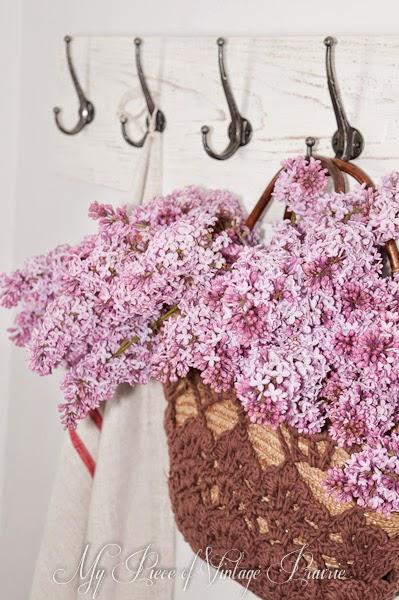Náruč plná orgovánu / Arms full of lilacs