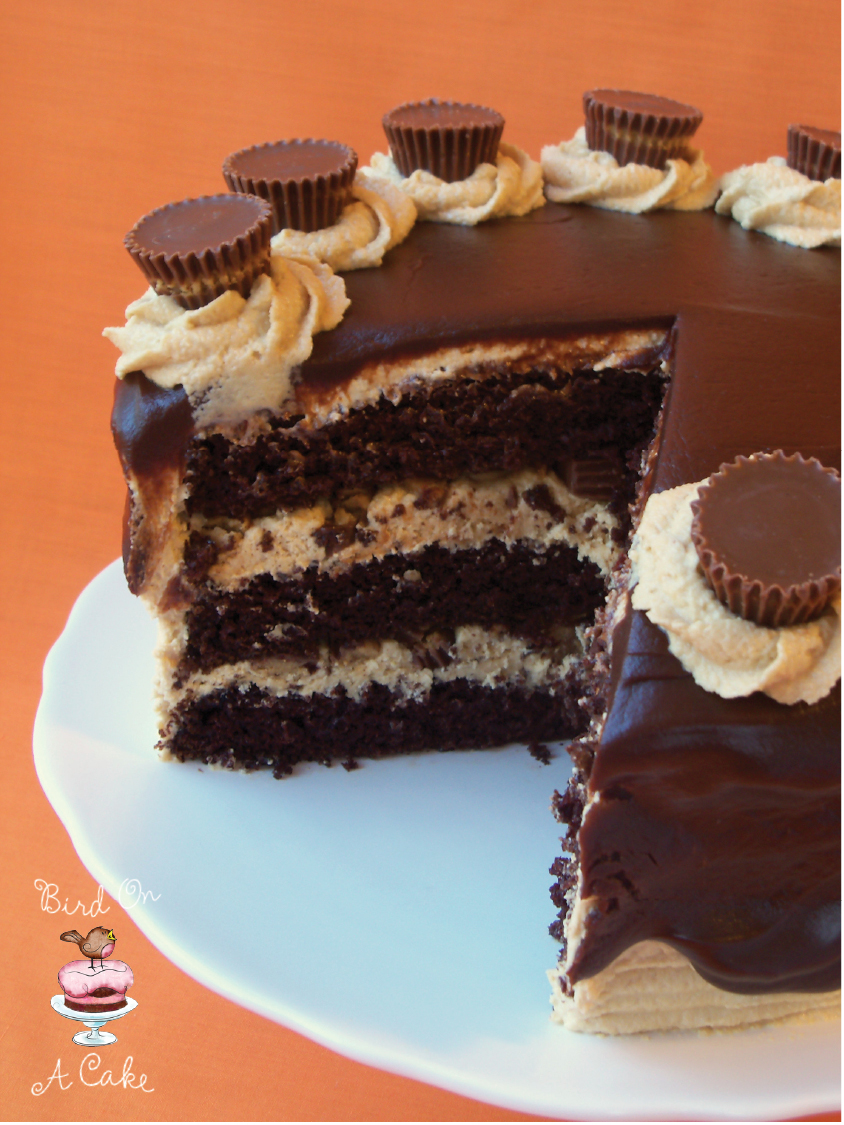 dirt cake fudgy chocolate peanut butter cup icebox cake chocolate ...