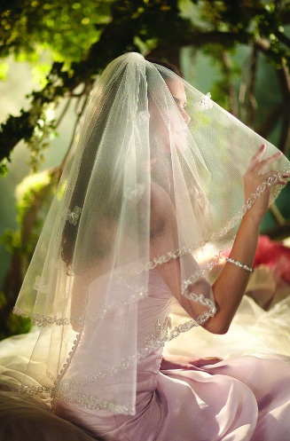 Official Disney Bridal Veils from Alfred Angelo - Sleeping Beauty