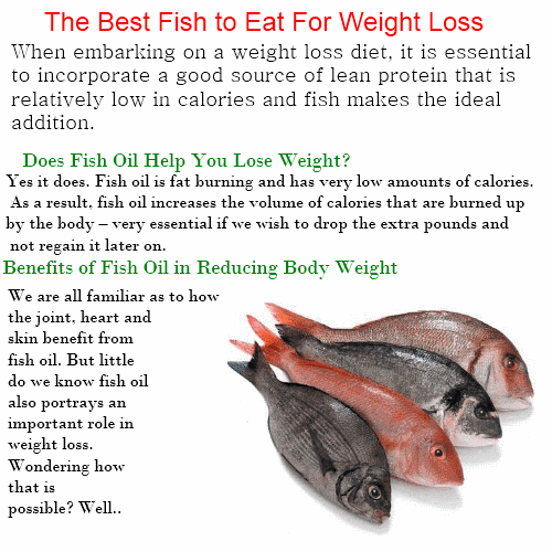 chose1ofbest weight fish the best fish to eat to lose ForBest Fish For Weight Loss