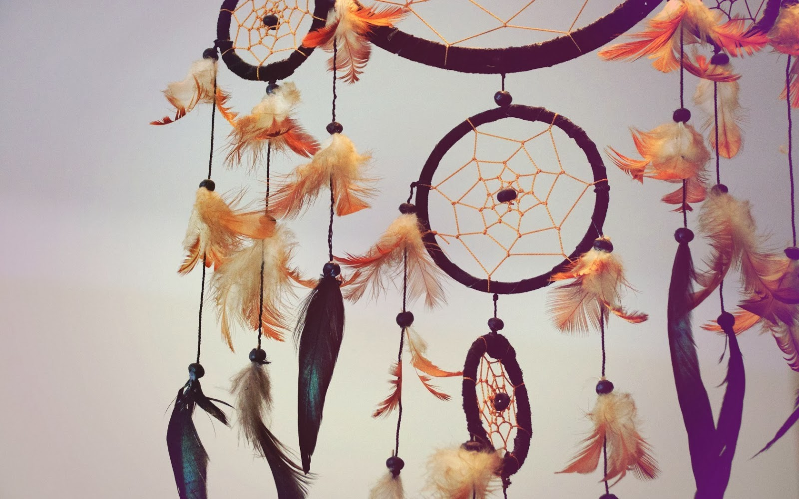 Dreamcatcher wallpapers hd beautiful wallpapers collection 2014 beautiful dreamcatcher hd 1 voltagebd Images