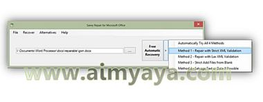 Gambar: Interface Savvy Repair for Microsoft Office