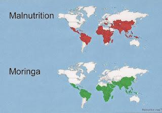 النسبة بين سوء التغذيه ومواقع ممكنة لزارعة المورينجا