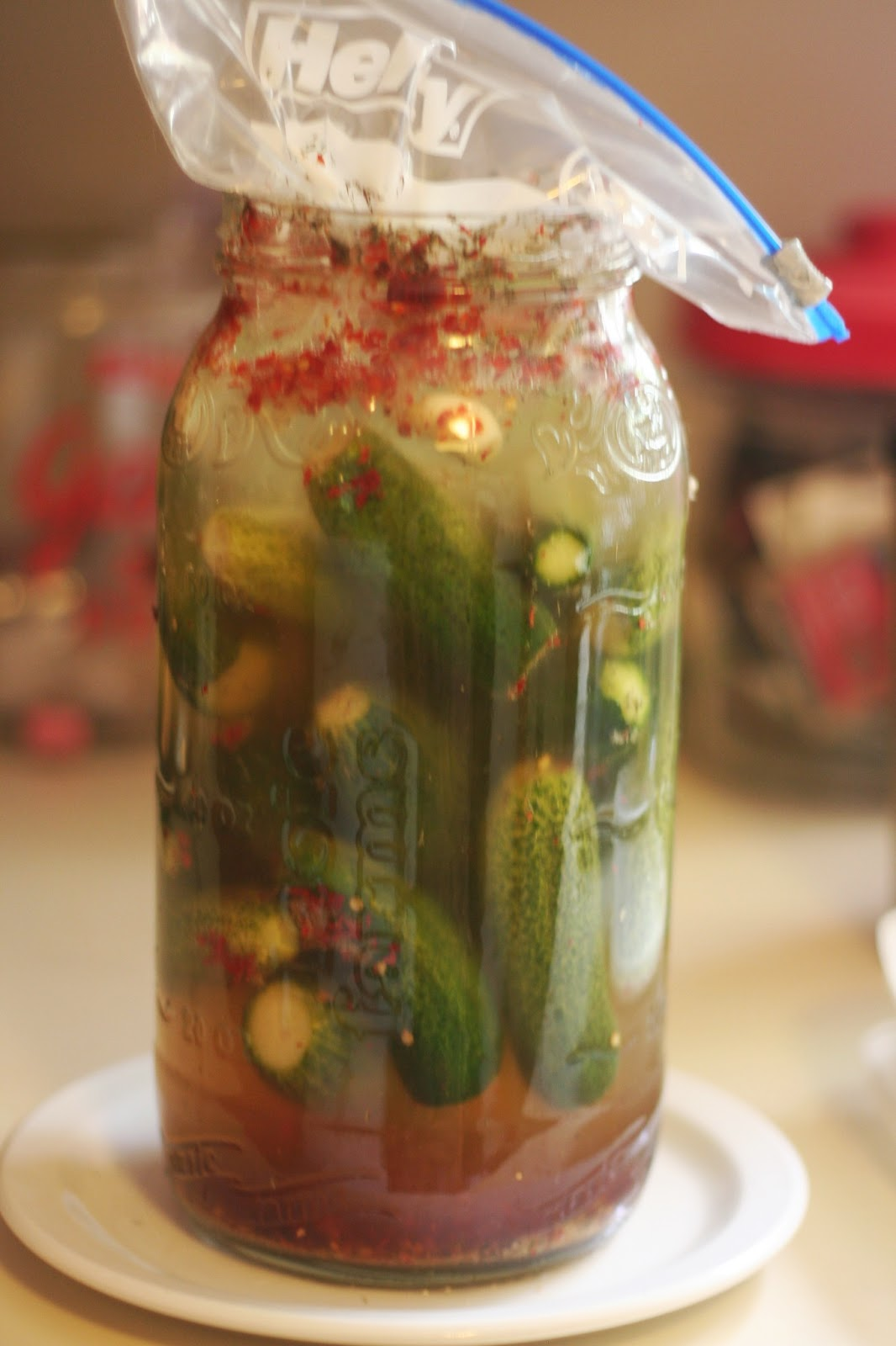 fermenting pickles