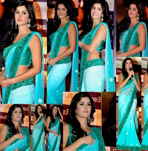 Katreena Kaif in Saree