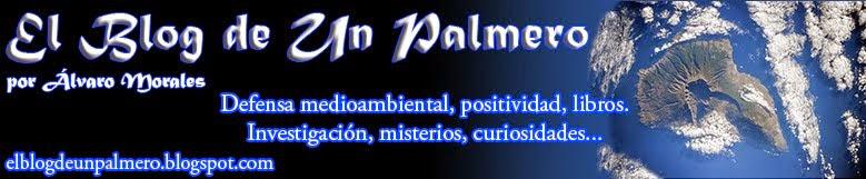 :: El Blog de Un Palmero ::