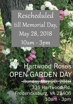 **** Rescheduled ****Open Garden Day 2018