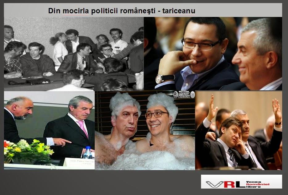 Din mocirla politicii româneşti - tariceanu