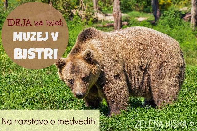 http://zelena-hiska.blogspot.com/2015/03/ideja-za-izlet-z-otroki.html