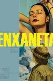 Ver Enxaneta (2011) Online