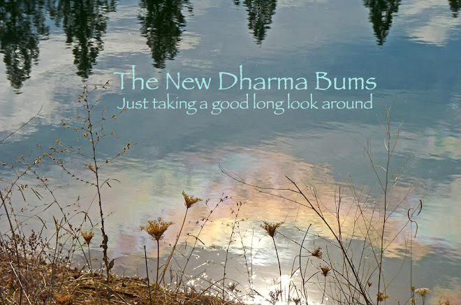 The New Dharma Bums