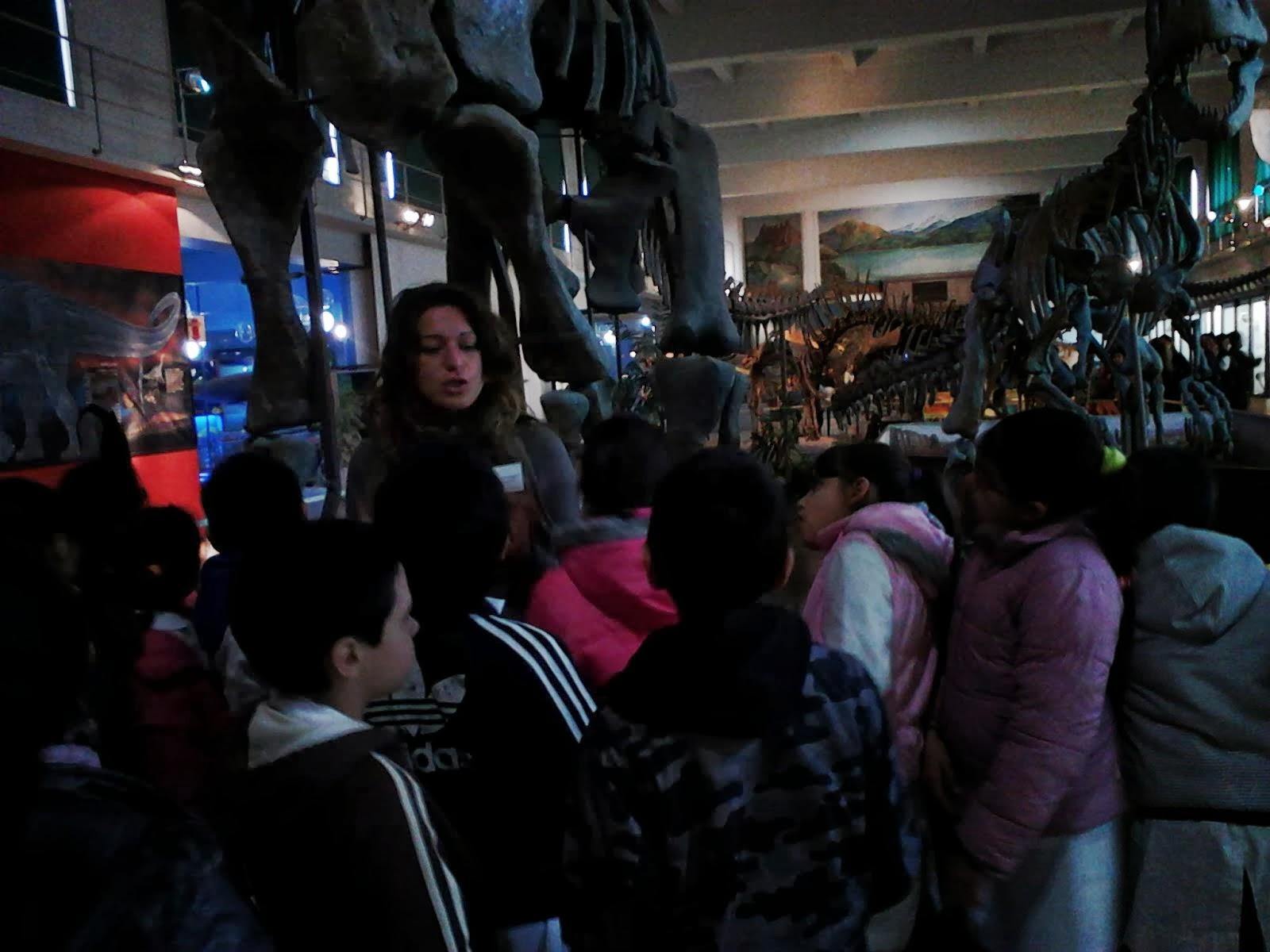 MUSEO DE CIENCIAS - tercero