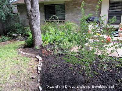 Divasofthedirt, weeded mulched bed