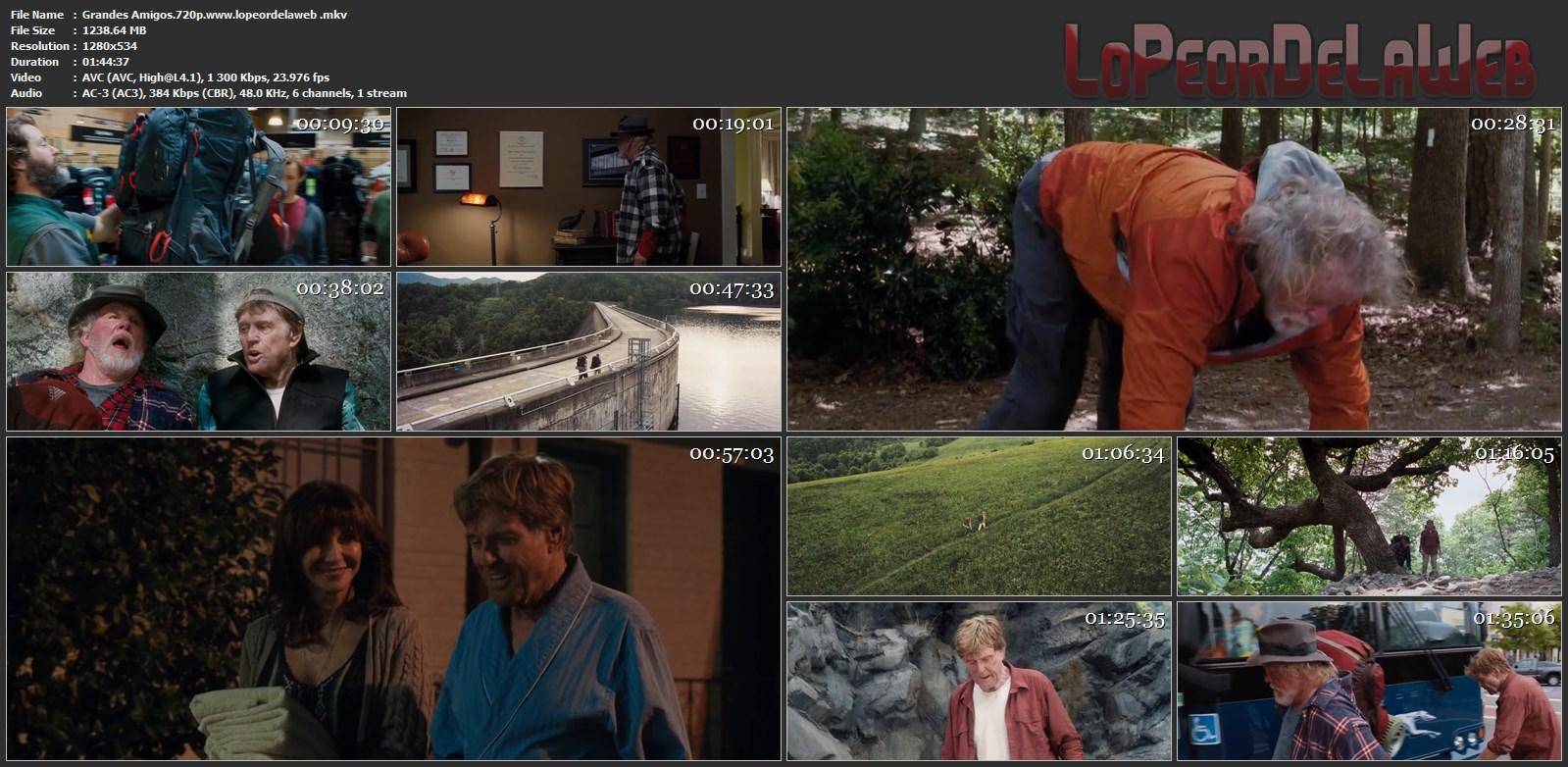 Un Paseo por el Bosque BRrip 720p Latino (2015) [Mega]