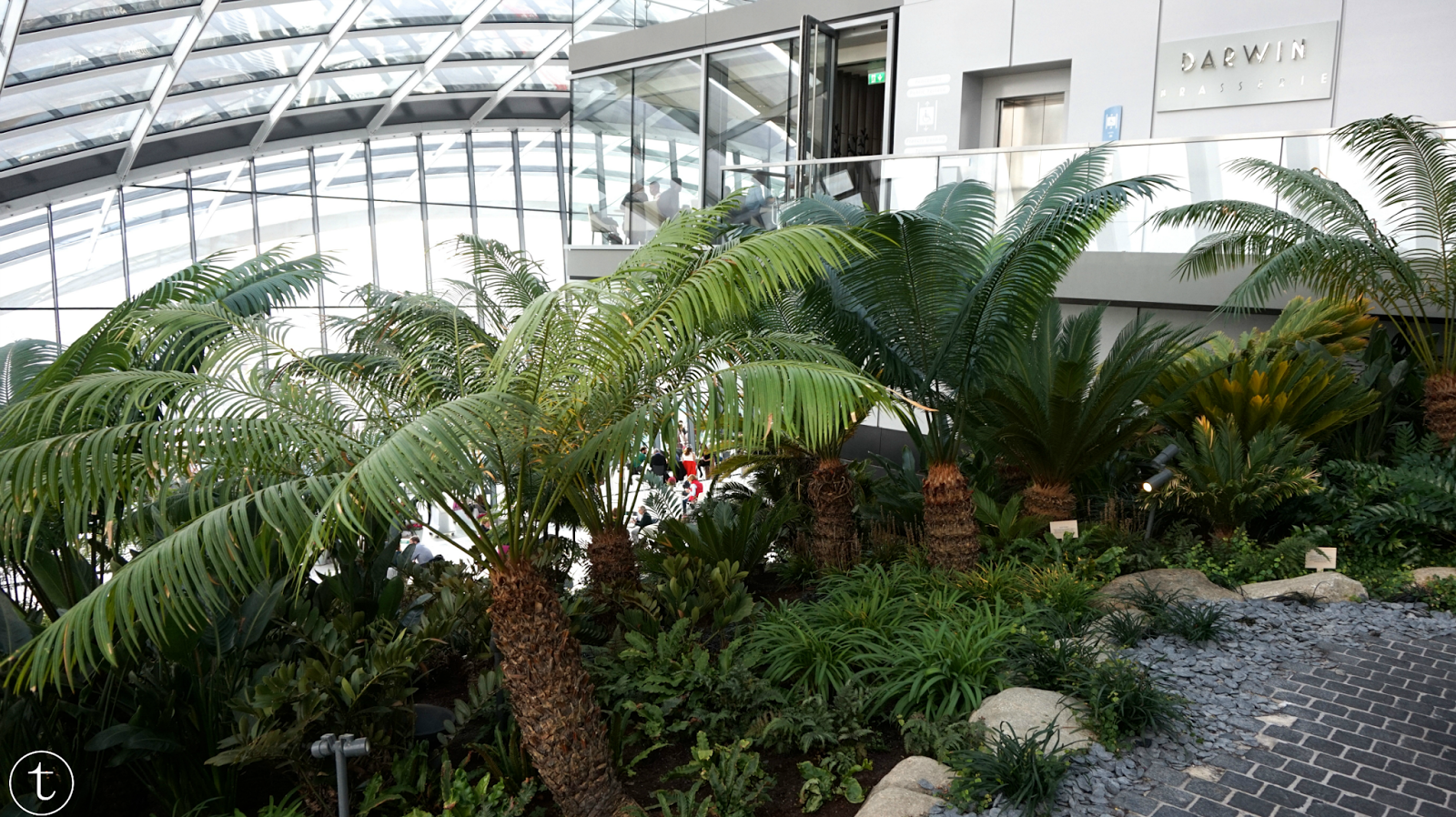 inside the sky garden in london at fenchurch street