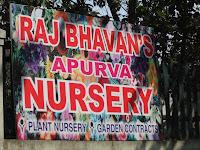 Rajbhavan Apurva nursery