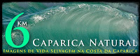 Caparica Natural - Blog