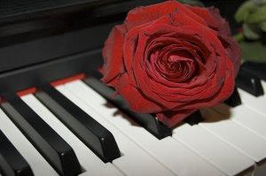 Puisi cinta romantis untuk pacar atau kekasih pasangan pujaan hati kata kata mesra paling menyejukkan rayuan gombal untuk kekasih