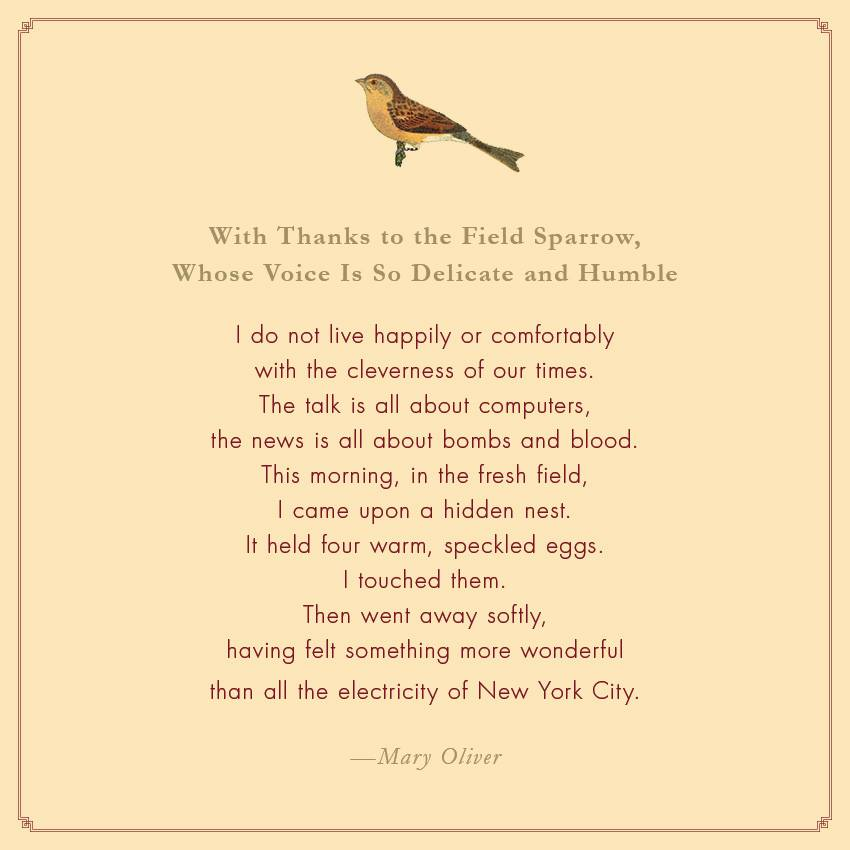 the best american essays 2009 mary oliver Mary oliver's poetry and prose mary oliver: poetry and prose best american essays: 2009 editor for 2009 issue (series editor robert atwan) 2-page introduction.