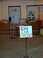 """Educazione alla lettura -Biblioteca """"A. Cialdi - Fondazione CARICIV bando 2012"""