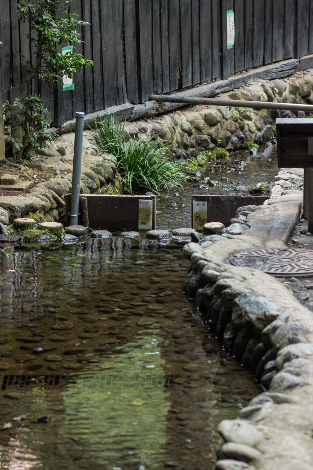真姿の池湧水群付近の水路の写真