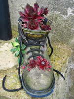 Саксия от стара обувка с градински цветя с червени листа