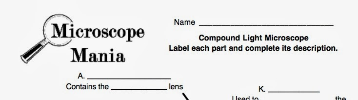 Mrs Reeds Science Class Archive Papers 1314 – Microscope Mania Worksheet