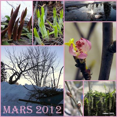 Återlick/ Mars 2012