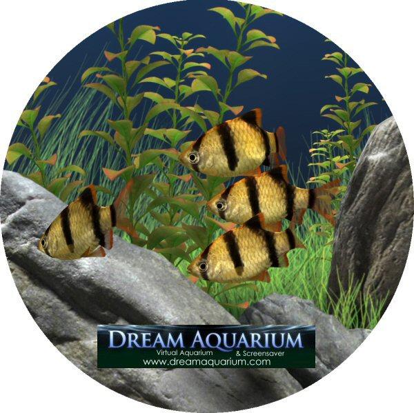 Dream+Aquarium Dream Aquarium 1.2592 Screensaver