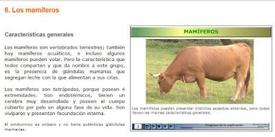 http://recursostic.educacion.es/newton/web/materiales_didacticos/EDAD_1eso_11_animales_vertebrados/contenido/1q11/1quincena11_contenidos_6a.htm