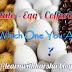 Are you a Potato, an Egg, or a Coffee bean ?