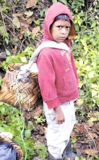 Foto niño campesino