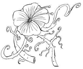 Desenhos Para Colori girassol desenhar