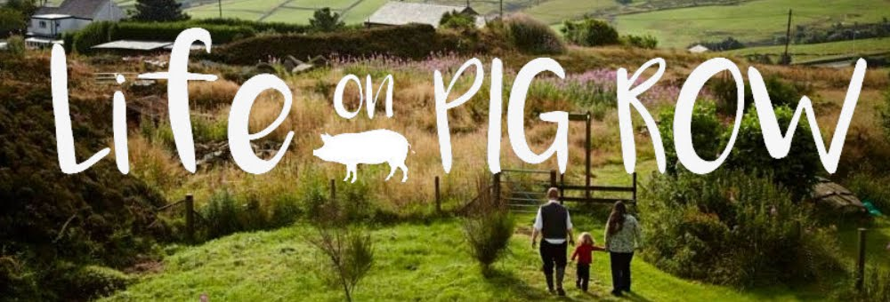 Life on Pig Row