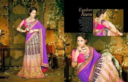 Simple Embroidered Sarees Collection