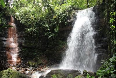 Cotundo Napo  - Ciudad de Tena – Lugares turísticos de Tena Napo – Cascada Mondayacu