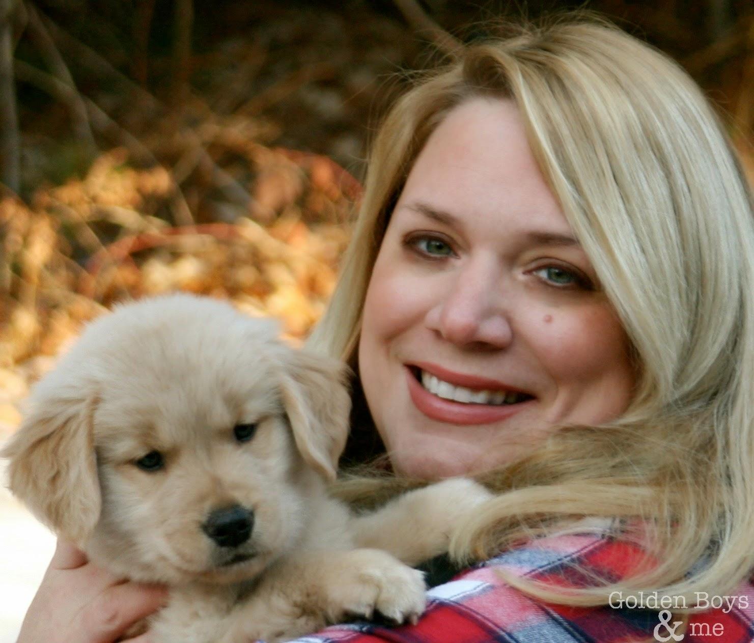 Golden Retriever puppy info via www.goldenboysandme.com
