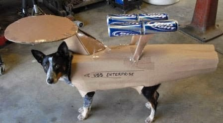 Star Trek Enterprise Dog Costume