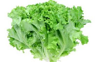 7 benefits Leaf Lettuce