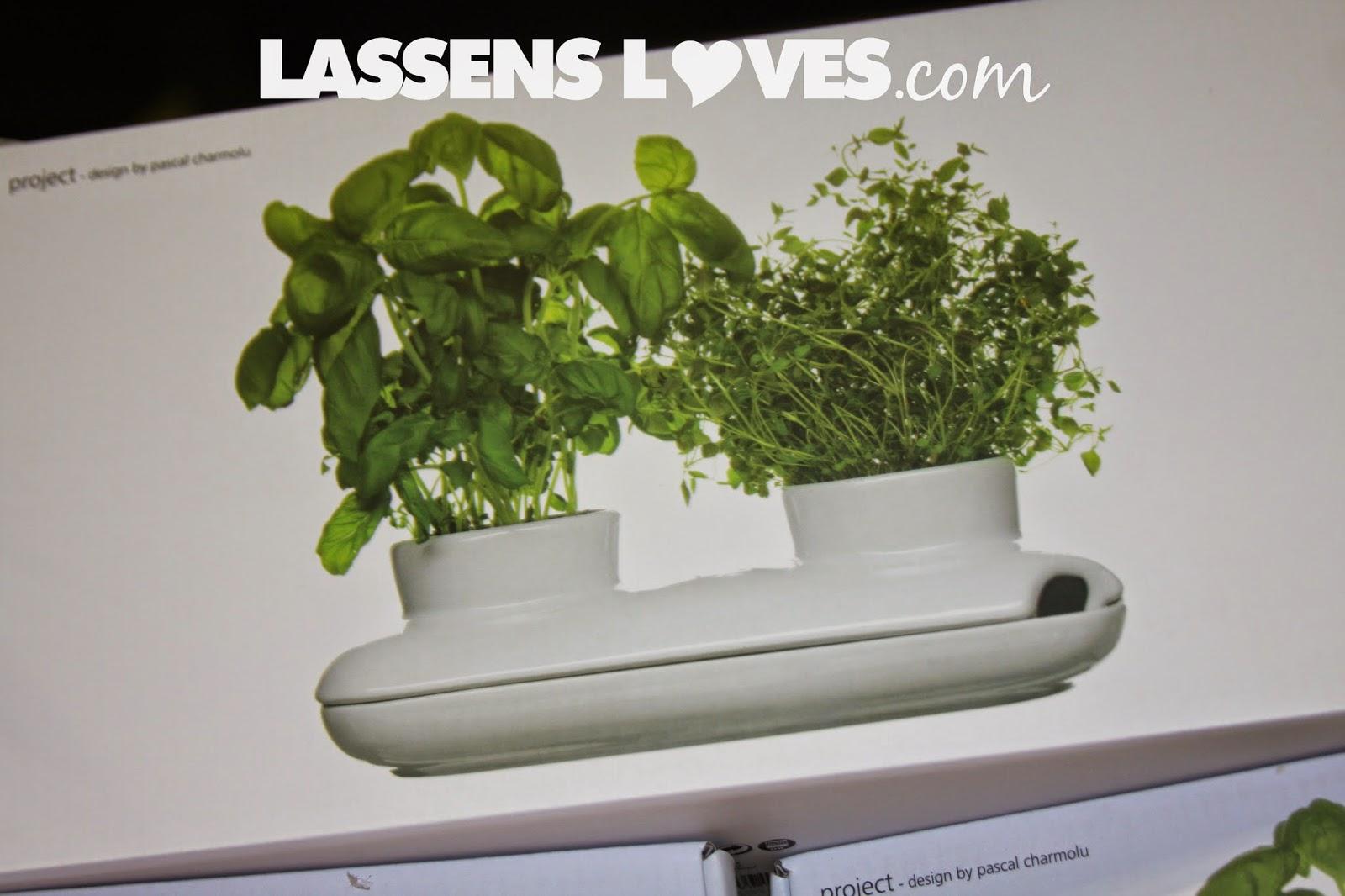 gift+ideas, indoor+gardens, kitchen+gardens, growing+kits