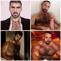 Bears with hairy chest