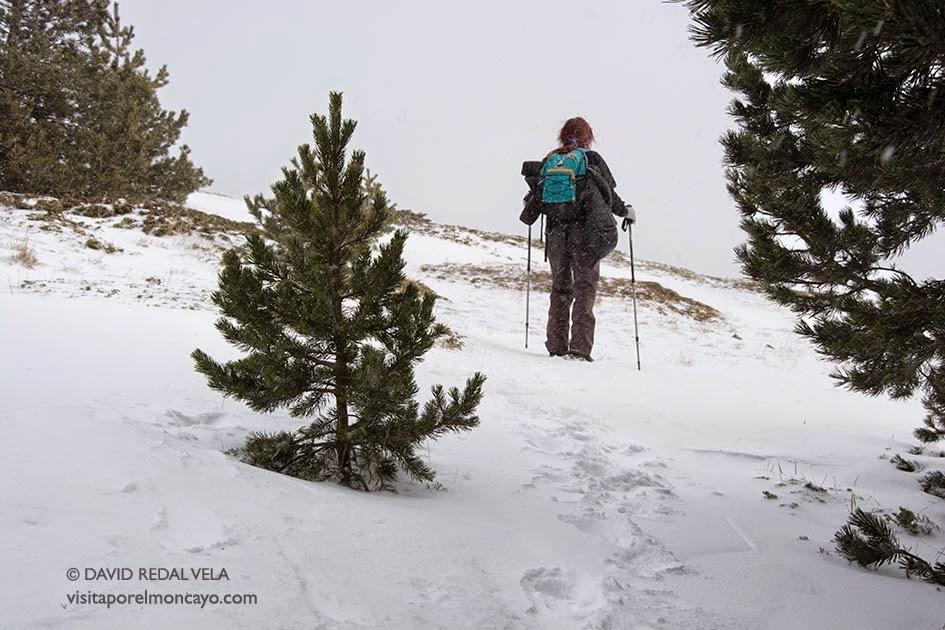 Collado Bellido Ruta Trekking Nieve
